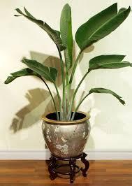 124 best zen garden and planters images on pinterest zen gardens