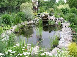 Rock Garden Plants Uk by Water Garden Wikipedia