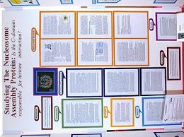 science        rules   psdbny    Twitter Parts of the Paper When you begin writing your research paper for you science fair project