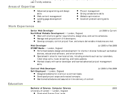 Examples For A Resume by Best Resume Online Service