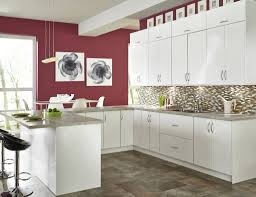 Tampa Kitchen Cabinets Furnitures Appealing Cabinetstogo For Bathroom Or Kitchen