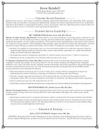Resume Service  resume service   best template collection       customer service resumes