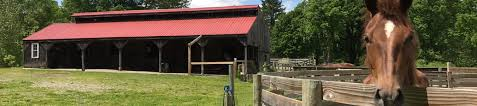 homes with barns equine homes real estate llc