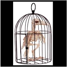 Halloween Skeleton Props by Skeleton Bird In Cage Halloween Prop Mad About Horror