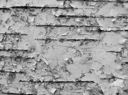 White Wood Furniture Texture Birch Bark Furniture U2014 Barn Wood Furniture Rustic Barnwood And