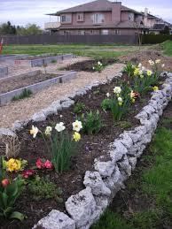 Small Rock Garden Pictures by How To Make A Rock Garden Home Design Website Ideas