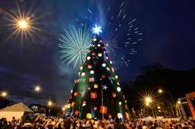 Árvore de Natal do Ibirapuera é inaugurada com queima de fogos e ...