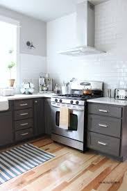 Hickory Kitchen Cabinet Doors Kitchen Inspirative Home Interior Replacing Kitchen Cabinet Door