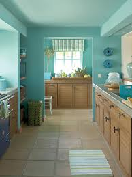 Best Kitchen Cabinet Paint Colors by Kitchen Cabinet Paint Pictures Ideas U0026 Tips From Hgtv Hgtv