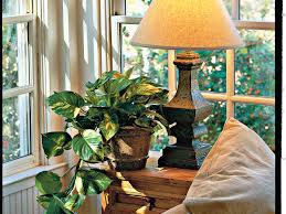 easygoing houseplants southern living