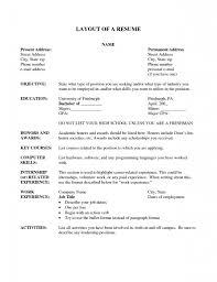 sample resume for marketing executive position resume layout samples 93 excellent resume layout samples 93 stylish design ideas layout of a resume 7 examples of resumes resume layout cover letter template