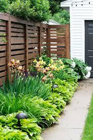 download backyard plants ideas solidaria garden