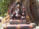 Wallpapers Backgrounds - Lord Ganesha Elephant God mouse worshipped before