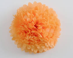 apricot tissue paper etsy