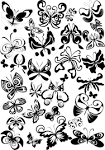 List of All Butterfly Tattoos Design Page 14   WakTattoos.com ...