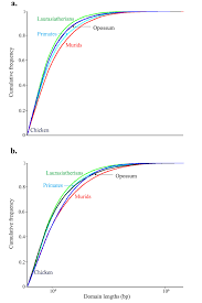 a comparative study and a phylogenetic exploration of the