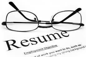 government resume writing service reviews  government resume