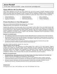 Example Resume  Personal Profile Resume Sample  it helpdesk     happytom co