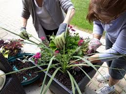 summer containers fast easy and cheap gardening with