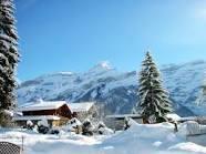 ¿¿¿Cuando comienzan las vacaciones de invierno 2011???