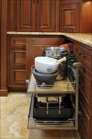 Blind Corner Kitchen Cabinet by Kitchen Deep Cabinet Storage Solutions How To Build A Corner