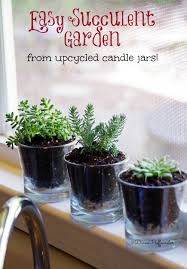 Diy Succulents Upcycle Candle Jars Into A Diy Succulent Garden Suburbia Unwrapped
