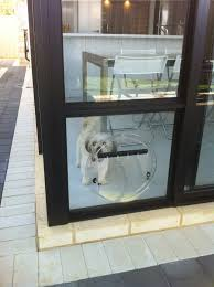 dog flaps for glass doors gallery glass door interior doors