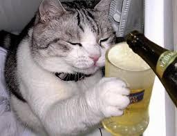 Bolje biti pijan nego star - pijanstvo i alkohol u fotografiji! :D Images?q=tbn:ANd9GcTFRee1VKDdiofDOcrg48ZSvrZUDSLXdsBPXxQFCh34nufvIryceg