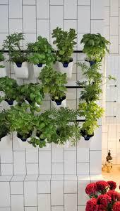 Garden Kitchen Ideas Best 20 Kitchen Rails Ideas On Pinterest Timeless Kitchen Wood