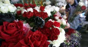 Beware dating websites that cheat you  consumer watchdog says The Irish Times Preparing roses for sale ahead of Valentine     s Day in Bangkok  Thailand  on February   th