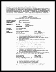 Sample Federal Government Resume by 100 Resume For Usa Cv Resume Example Jobs Template Useful