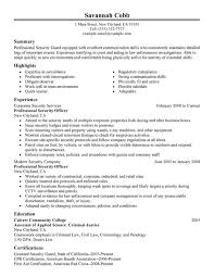 Examples Of Professional Summary For Resume by Unforgettable Professional Security Officer Resume Examples To