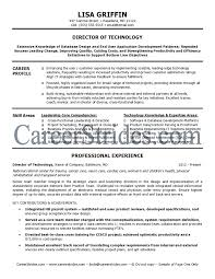 Director Of Operations Resume Sample by Director Resume Examples Sales Manager Sample Resume Executive