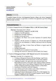 Secretary Resume Sample by Best 25 Career Objective In Cv Ideas On Pinterest Resume Career