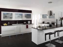 Euro Design Kitchen Kitchen Design Miami Best Kitchen Designs
