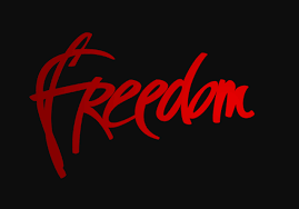 freedom android iap cracker u0027s wallpaper for pc n hd phones gfx