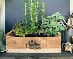 indoor herb planter boxes indoorherbkits com