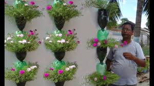 tree planting in hanging bottles on wall youtube