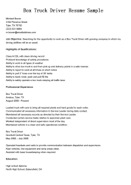 Manager Resume Template  it project manager resume template