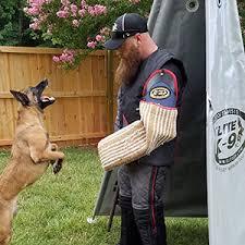 belgian shepherd nc charlotte dog training