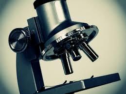 medical lab technician resume sample medical laboratory technician salary jobs schools