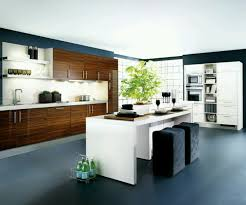 kitchen designs new home designs latest kitchen cabinets