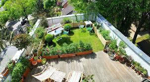 Rooftop Garden Ideas Tobias U0027s Rooftop Garden In Berlin Fine Gardening