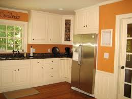 Updated Kitchen Ideas Painting Kitchen Appliances Pictures Ideas From Hgtv Idolza