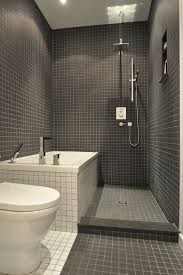 Tile Ideas For Small Bathroom The 25 Best Small Bathroom Showers Ideas On Pinterest Small