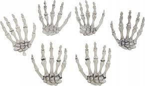 Halloween Skeleton Props by Skeleton Skull Bone Nightmare Factory Costumes And Props 1 Of