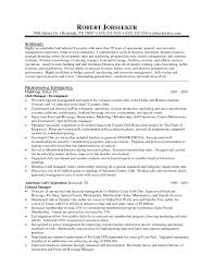 The Best District Manager Resume Sample Resume Exampl Store       car salesman resume