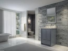 bathroom simple bathroom designs grey modern double sink