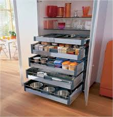 Kitchen Pantry Shelving Ideas by Kitchen Room Pantry Design Ideas Furniture Charming House Ideas