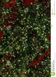 peaceful background of christmas tree with red and gold